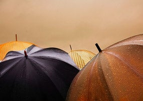 RainyDay_SSG_Robert_Stewart_CCFlickr