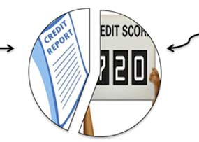 Credit Reports vs. Credit Scores: What Are You Looking For?