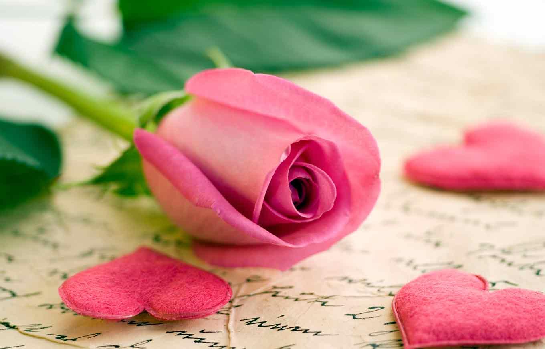 Love Letters To Debt Collectors Credit Com