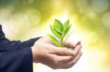 5 Ways to Be Green With Your Money