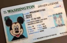 Mickey Mouse: Identity Theft Victim