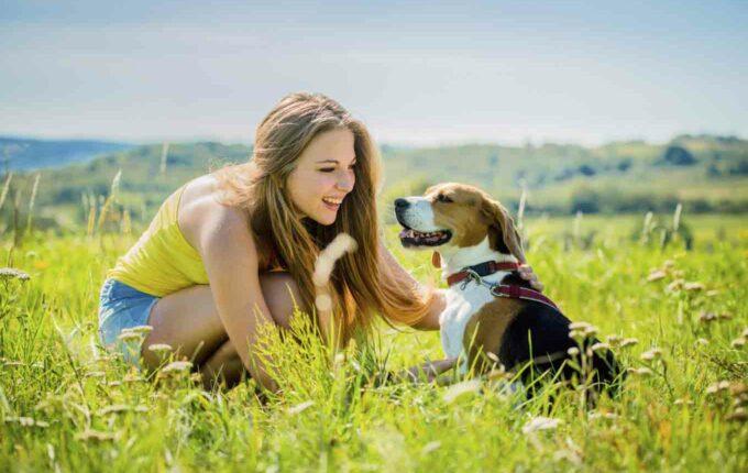 pet care costs
