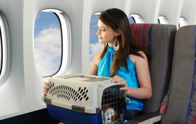 fly-with-pets-travelers