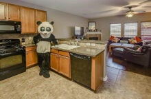 Woman Wears Panda Suit in Real Estate Pictures to Get Home Sold