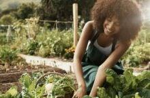 grow-in-your-own-garden