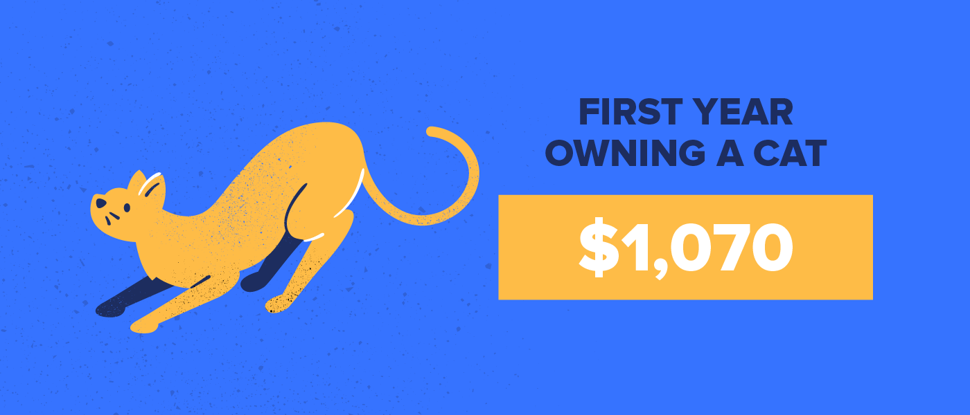 first year of owning a cat costs $1,070
